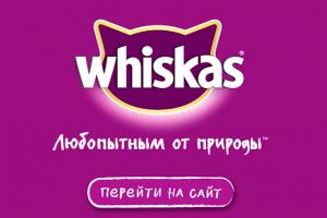 Ролик Whiskas® от BBDO Moscow стал одним самых популярных рекламных видео на YouTube