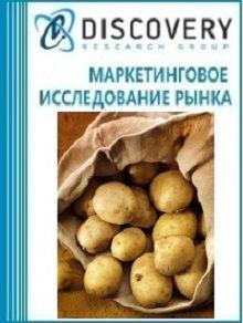 Анализ рынка картофеля в России