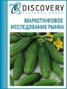 Анализ рынка огурцов и корнишонов в России