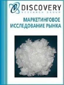 Анализ рынка полиацеталей, полиэфиров, смол эпоксидных, поликарбонатов, алкидых смол и прочих сложных полиэфиров в первичных формах в России
