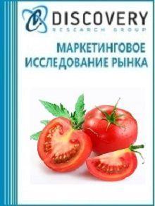 Анализ рынка томатов в России