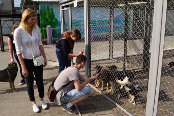 Сотрудники компании «Евродом» призывают нижегородские фирмы к «Состраданию»
