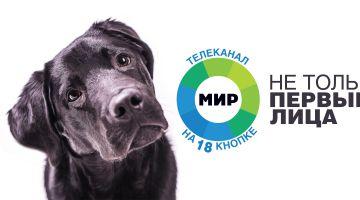 Телеканал «МИР» запустит рекламную кампанию
