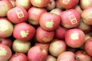 Apple: Creative vs. marketing? creative & Marketing!