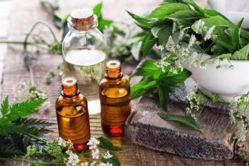 «Арома-Эйр» о лучших ароматах для успешного ведения бизнеса