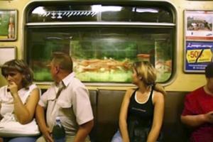 В тоннелях метро может появиться реклама