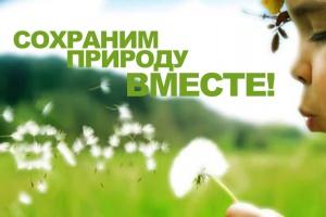 Москва готова потратить почти 35 млн руб. на экологическую рекламу