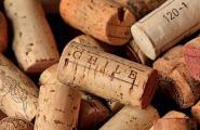 Фестиваль чилийского вина