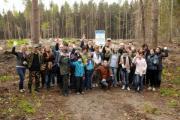 Российский бизнес помогает в восстановлении лесов в Калужской области