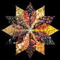 Торговый Дом Ярмарка представляет более 70 видов экзотических круп
