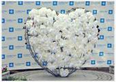 У «Влюбленного Сердца» в Одессе «Киевстар» организовал парад невест