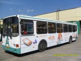 Новые белые Лиазы. Автобусов много, а белые Лиазы только у нас.