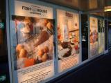 «062-Реклама» открывает новое направление: реклама на круизных паромах