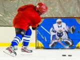 Да здравствует хоккей