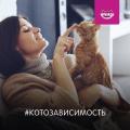 Котозависимость: новый проект BBDO Moscow для бренда Whiskas®