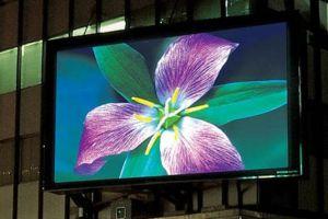 IAB: Дисплейная реклама в Европе растёт быстрее контекстной
