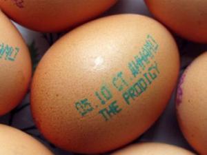 Рекламу концерта The Prodigy в Минске поместили на яйца