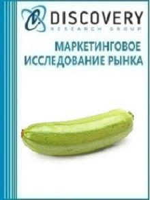 Анализ рынка кабачков в России