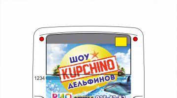 Автобусы ПТК приглашают на шоу дельфинов