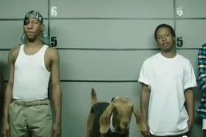 PepsiCo отозвала рекламу газировки из-за обвинений в расизме