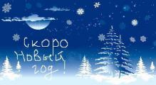 Скоро Новый 2012 год! Успейте купить!