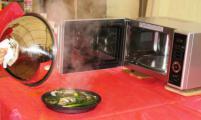 """Форум """"Селигер-2011"""": Бытовая техника LG Electronics для здорового образа жизни"""