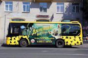 Пятнистые автобусы зовут петербуржцев в джунгли
