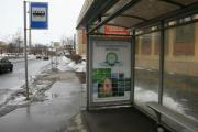 В России стартовала программа по защите экологии и окружающей среды