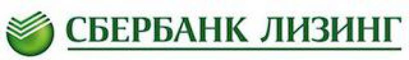 Кирилл Александрович Царёв назначен заместителем генерального директора ЗАО «Сбербанк Лизинг»