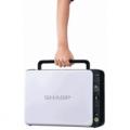 МФУ Sharp AL-1035WHRU