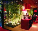 Итоги выставки «I Saloni»: Зеленый, значит, модный!