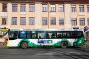 «Гарден-Сити» озеленяет автобусы