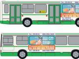 Пассажиры автобусов ПТК открывают летний сезон отпусков с Версой