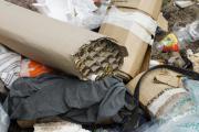 Незаконный полигон ТБО «Ашитково»: ликвидация или временная приостановка работы