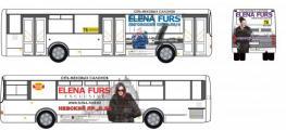 На городских автобусах ПТК поедут роскошные дамы