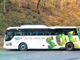 «Нью-Тон» укрыл лоскутным одеялом Олимпийские автобусы