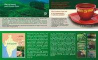 Печать листовок для чайной компании