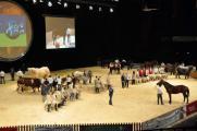 Приглашаем на саммит животноводства в Клермон-Ферран 3-5 октября 2012