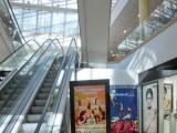 Реклама в торговых комплексах Санкт-Петербурга